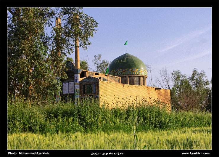 shah mehdi